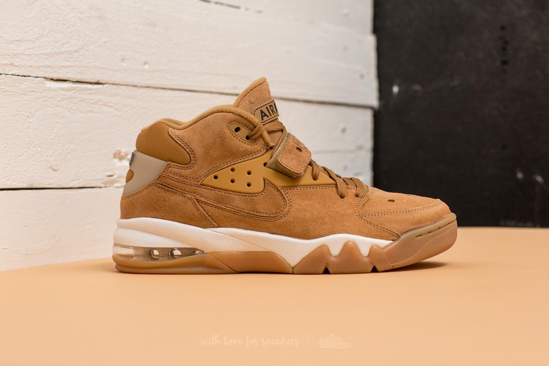 Men's shoes Nike Air Force Max Premium