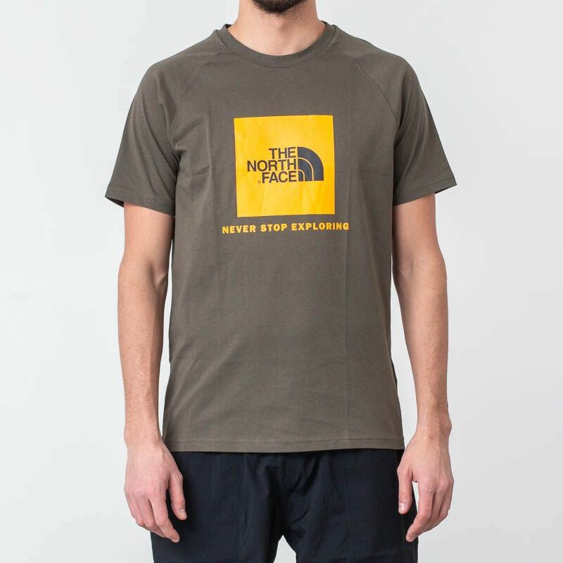The North Face Raglan Red Box Tee New Taupe Green