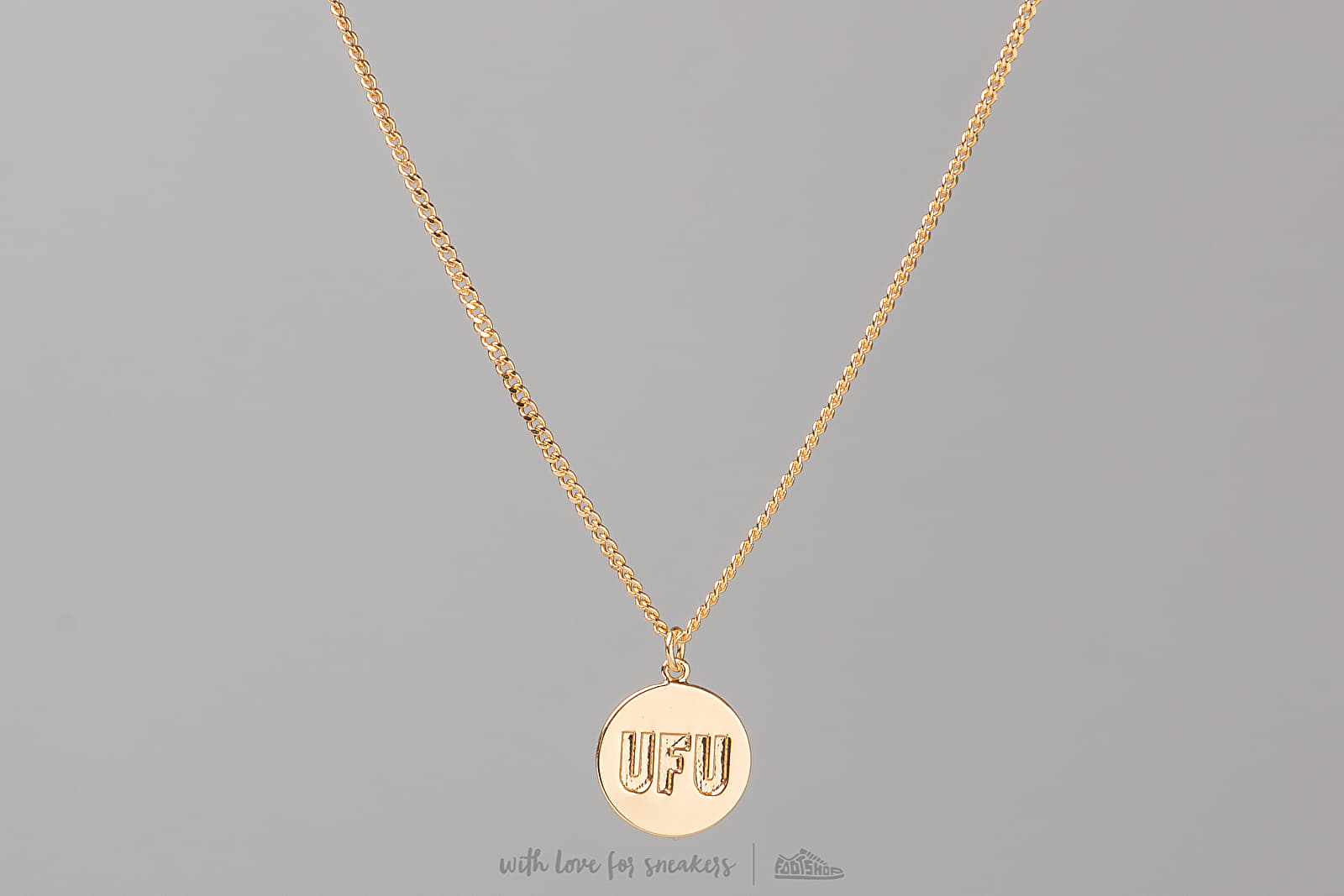 Used Future Universal Circle Necklace