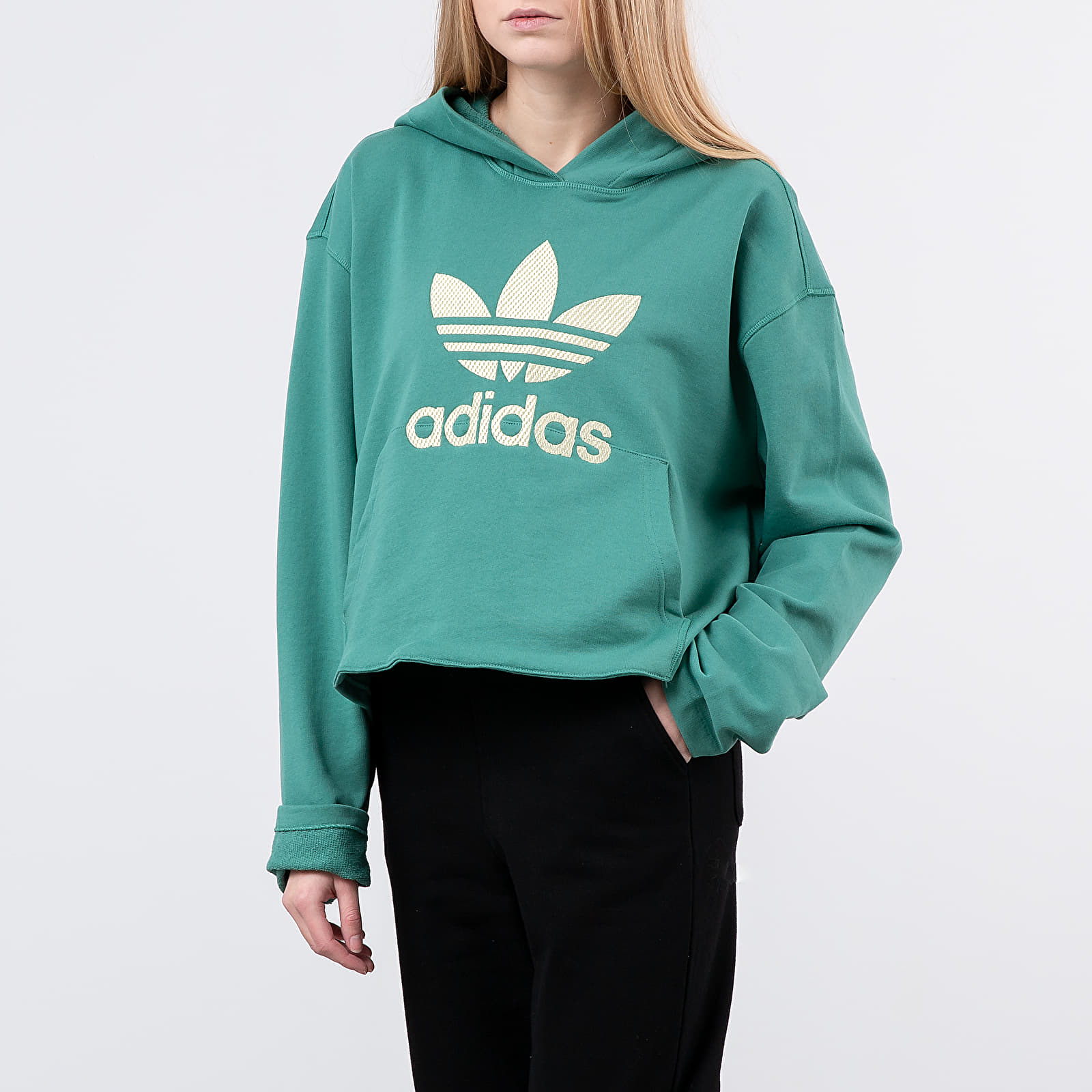 Sweatshirts adidas Logo Hoodie Future Hydro F10